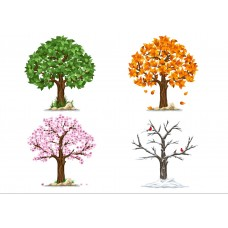 "Фетр с рисунком ""4 сезона дерево 2"""