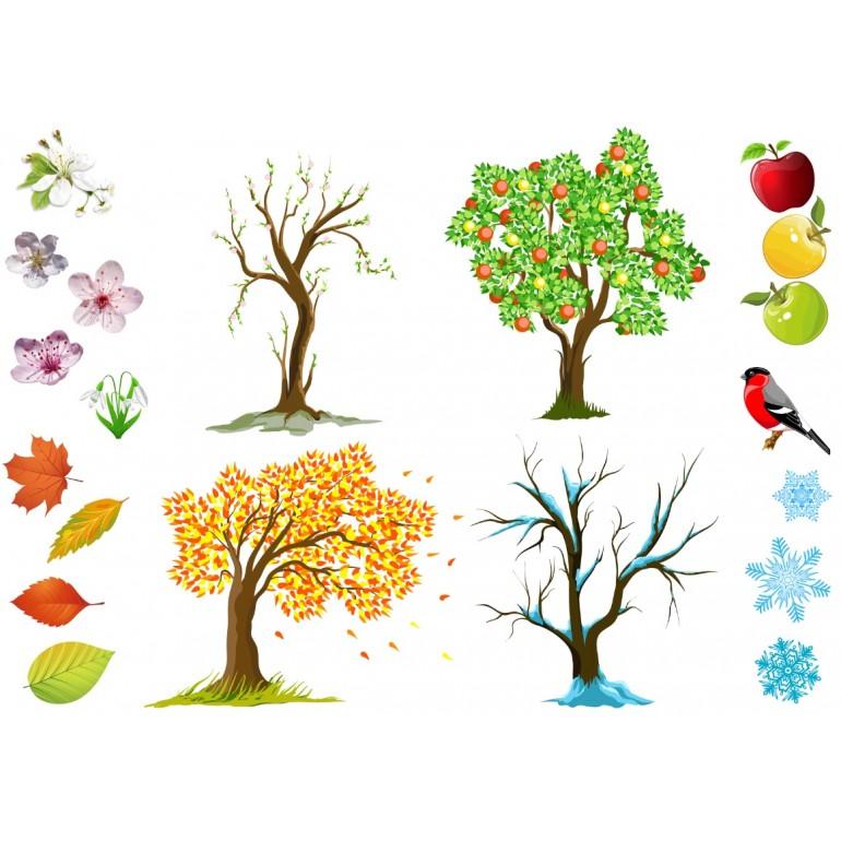 Картинка дерев время года