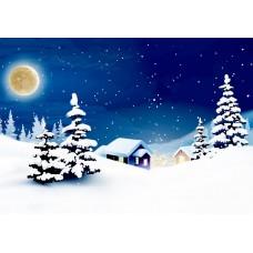 "Ткань для липучки с рисунком ""Зимняя ночь"""